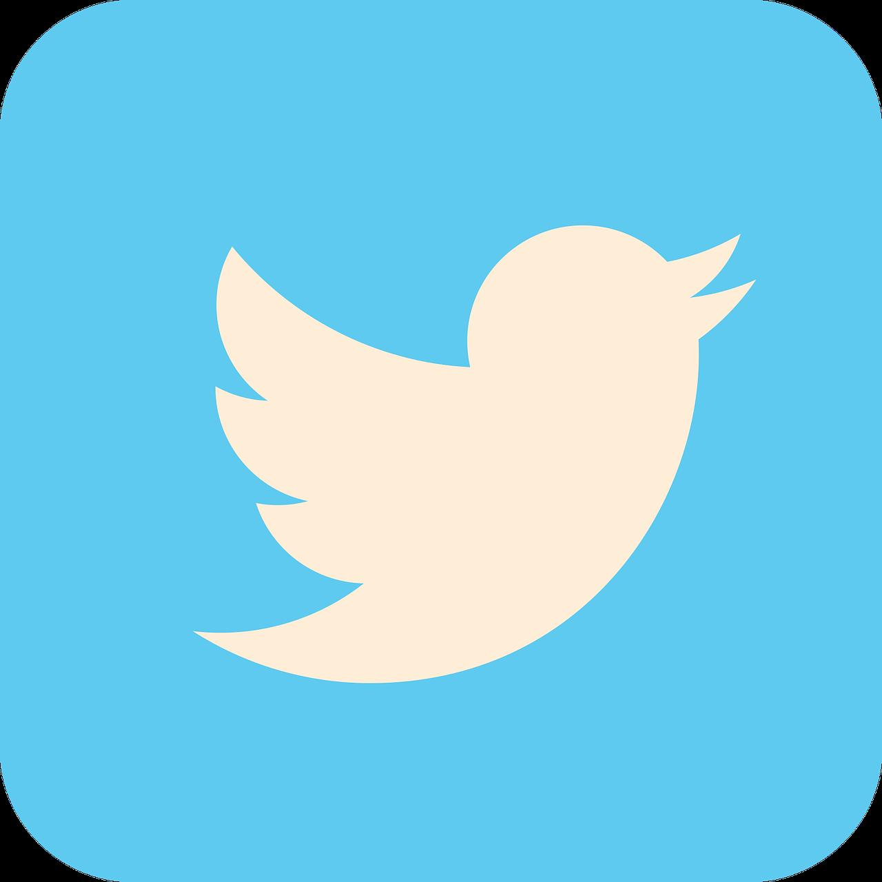 assumption grotto twitter